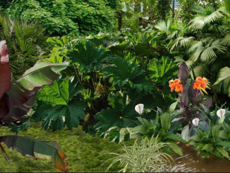 Am nagement de jardins et ext rieurs design morbihan for Paysagiste jardin exotique