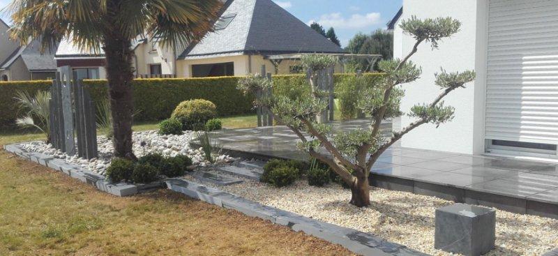 Olivier taille en nuage maison design - Jardin taille olivier ...